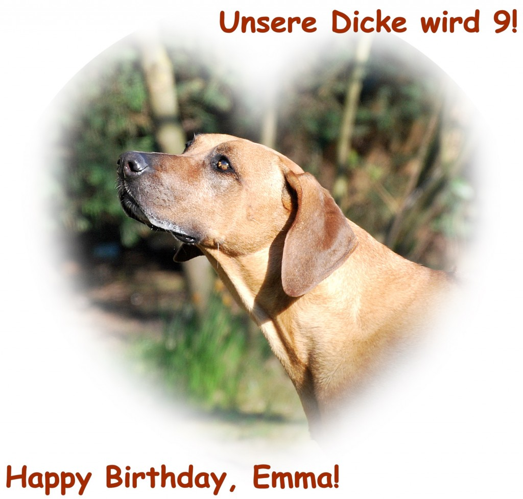 Emma Geburtstag 2 1024x977 Unsere Dicke