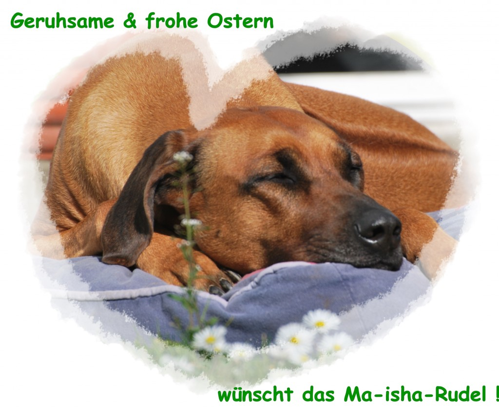 Ostern 4 1024x837 Frohe Ostern....